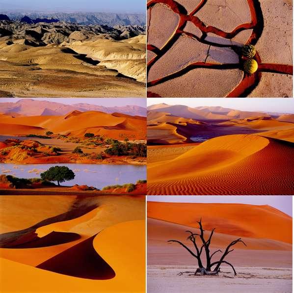 Pack H - Desert