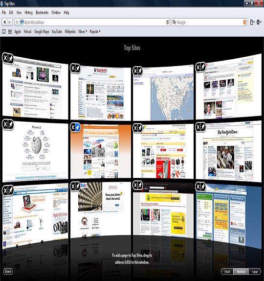 Apple Safari v4.0