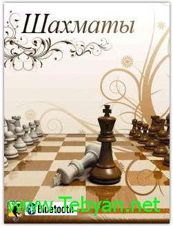 Chess BlueTooth