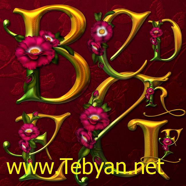 Abelarde Roses