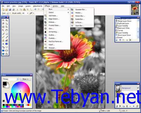 Paint.NET 3.5.3 Portable