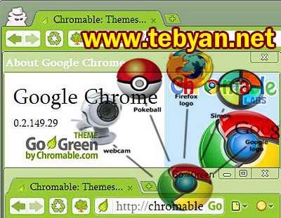 Google Chrome 6.0.401.1