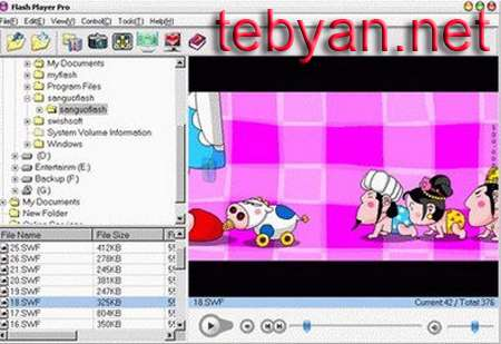 Flash Player Pro 2011