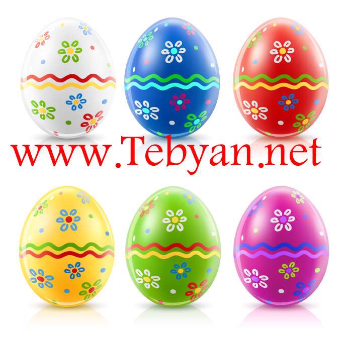 Eggs Feature Vector material