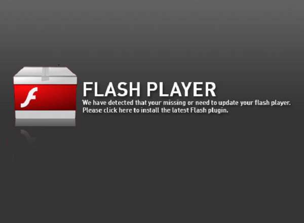 Flash Player Pro 4.9 All In One