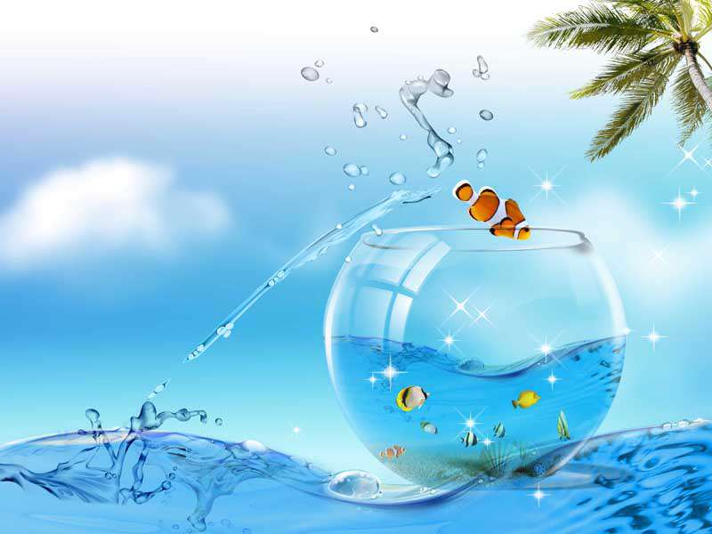 تصاویر لایه باز جذاب و دیدنی تنگ ماهی و دریا