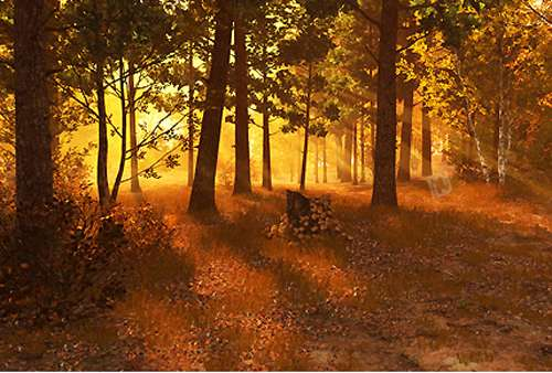محافظ صفحه نمایش جنگل پاییزی 3Planesoft Autumn Forest 3D Screensaver v1.0.0.1