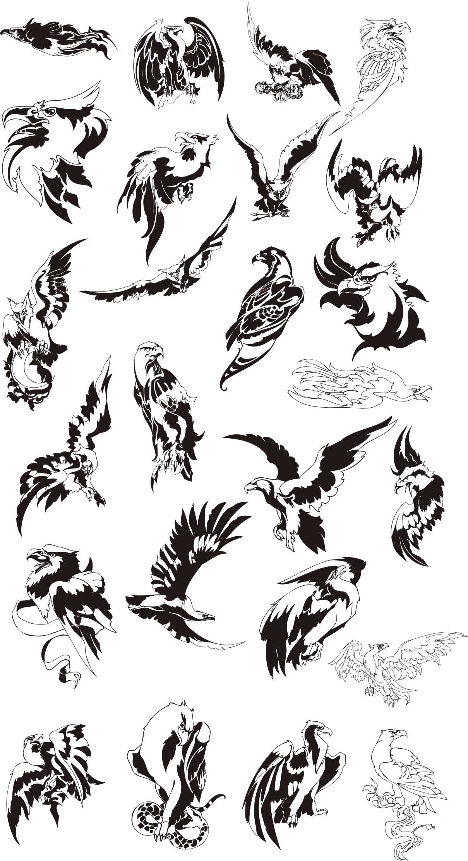 تصاویر 50 وکتور زیبا و با کیفیت از عقاب ها