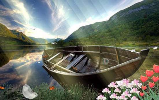 محافظ صفحه نمایش طبیعت بهشت Swan Paradise Screensaver