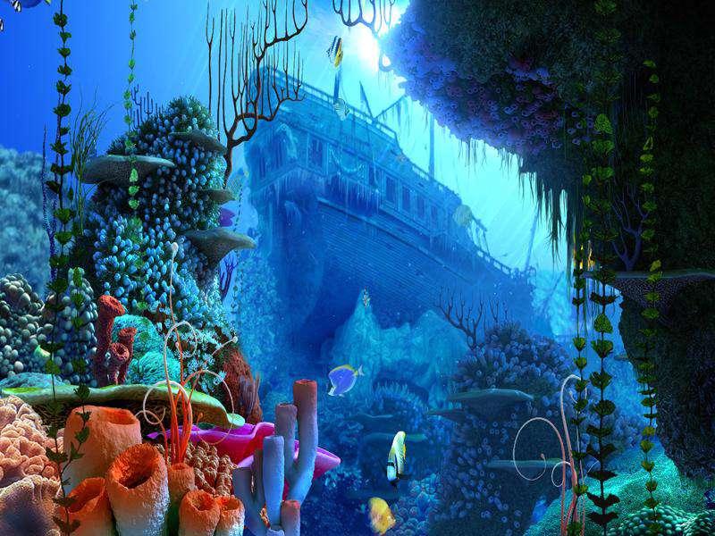 Coral Reef 1.0.0.2