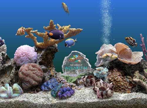 محافظ صفحه نمایش آکواریوم Marine Aquarium v3.2.5991