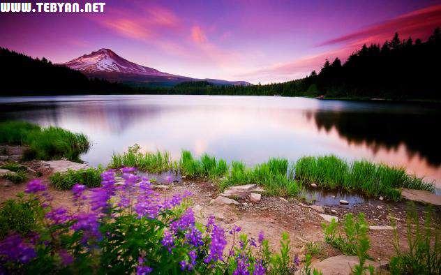 50 تصویر (والپیپر) زیبا و فوق العاده از طبیعت با کیفیت Full HD