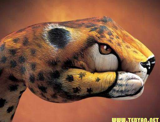 تصاویر (والپیپر) زیبا از ساختن تصاویر حیوانات با دست