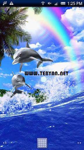 والپیپر زنده و متحرک Dolphin Rainbow v1.3.0 نسخه اندروید