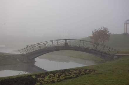 چشم اندازی از یک پل