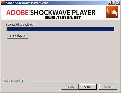 مشاهده فایل های فلش در وب، Adobe Shockwave Player 11.6.8.638