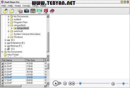 اجرا و مدیریت فایل های فلش + پرتابل، Flash Player Pro 5.2