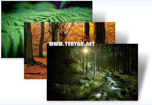 پوسته (تم) زیبای جنگل های رویایی برای ویندوز7، Forests Win 7 Theme