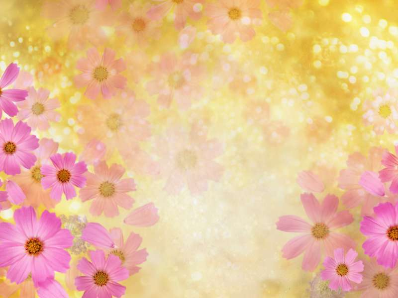 تصویر لایه باز پس زمینه گلدار با فرمت psd، سری چهارم
