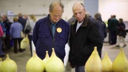 """برگزاری مسابقات """"بزرگترین سبزیجات دنیا"""" در انگلستان!"""