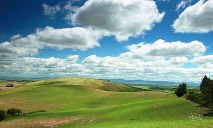 تپه های سرسبز