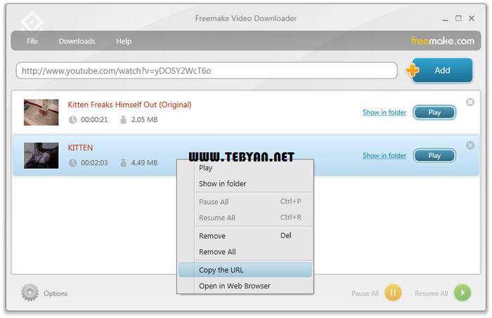 دانلود ویدیوهای آنلاین، Freemake Video Downloader 3.4.3