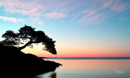 دریای آرام