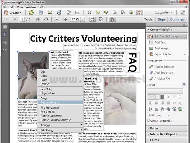 مدیریت و ویرایش فایل های پی دی اف، Adobe Acrobat XI Professional 11.0.1