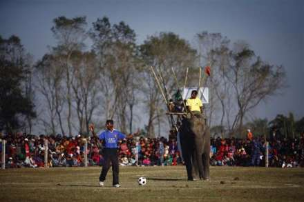 مسابقه فوتبال فیل ها