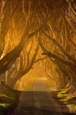 جاده رویایی در ایرلند