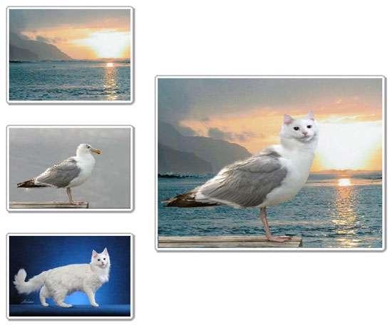 ویرایش و ترکیب تصاویر، FotoMix 9.2.4