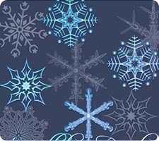 براش برف، سرما و کاج، درخت، سری سوم
