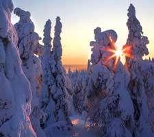 مجموعه 20 عکس چشم انداز زمستانی