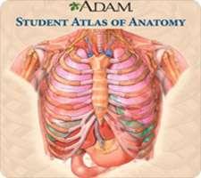 آموزش آناتومی برای دانش آموزان، A.D.A.M Student Atlas of Anatomy 1.00.05.11