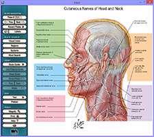 دانلود Interactive Atlas of Human Anatomy دایرة المعارف گویای آناتومی بدن انسان