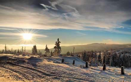 برف، زمستان، آسمان، درخت