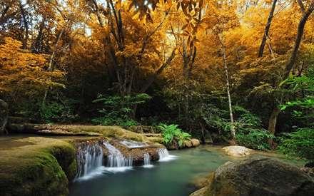 پاییز، زیبا، رودخانه، سنگ، درخت