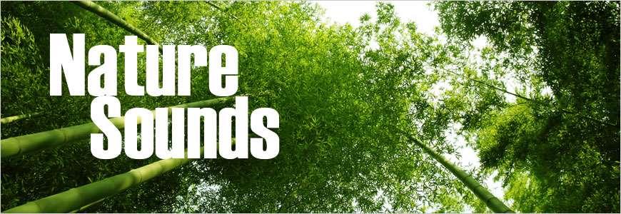 دانلود نرم افزار صدای طبیعت 2.9.3 Nature Sounds برای اندروید