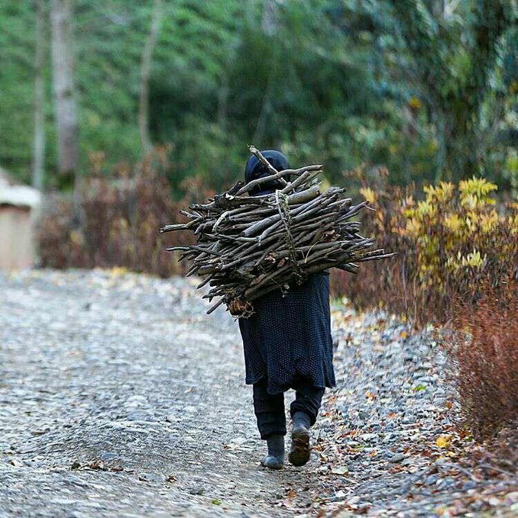 هیزم، زن روستایی، طبیعت، دهات، چوب