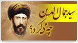 سید جمال الدین چه میکرد؟