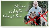 مجازات نگهداری سگ در خانه