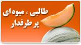 طالبی؛ میوهای پرطرفدار