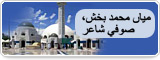 مياں محمد بخش، صوفي شاعر