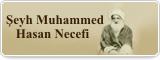 Şeyh Muhammed Hasan Necefi