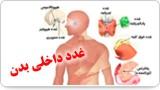 غدد داخلی بدن