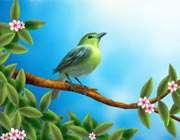 آمد بهار خرم و آمد بهار یار