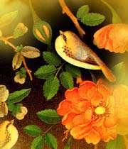 باغبان گر پنج روزى صحبت گل بایدش