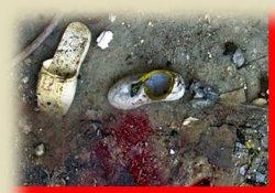 Bağdat'ta 3 günde 150 ölü