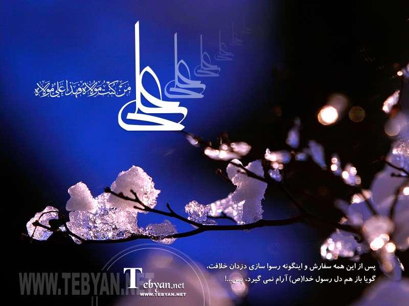 جاذبه و دافعه حضرت علی (ع) (9)