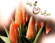 محو نور محمد